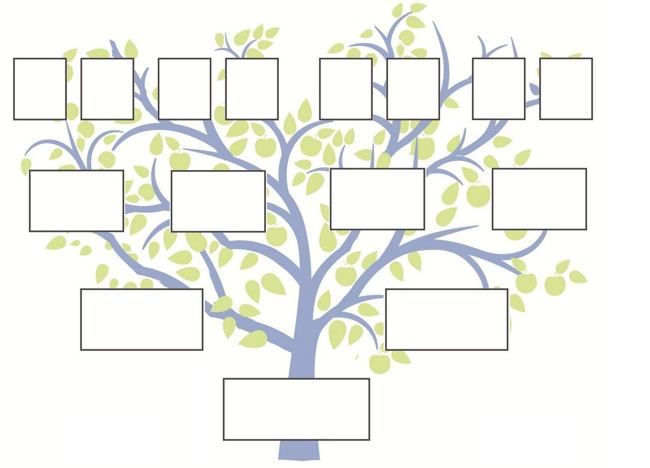 family tree template | Clases | Blank family tree template, Free