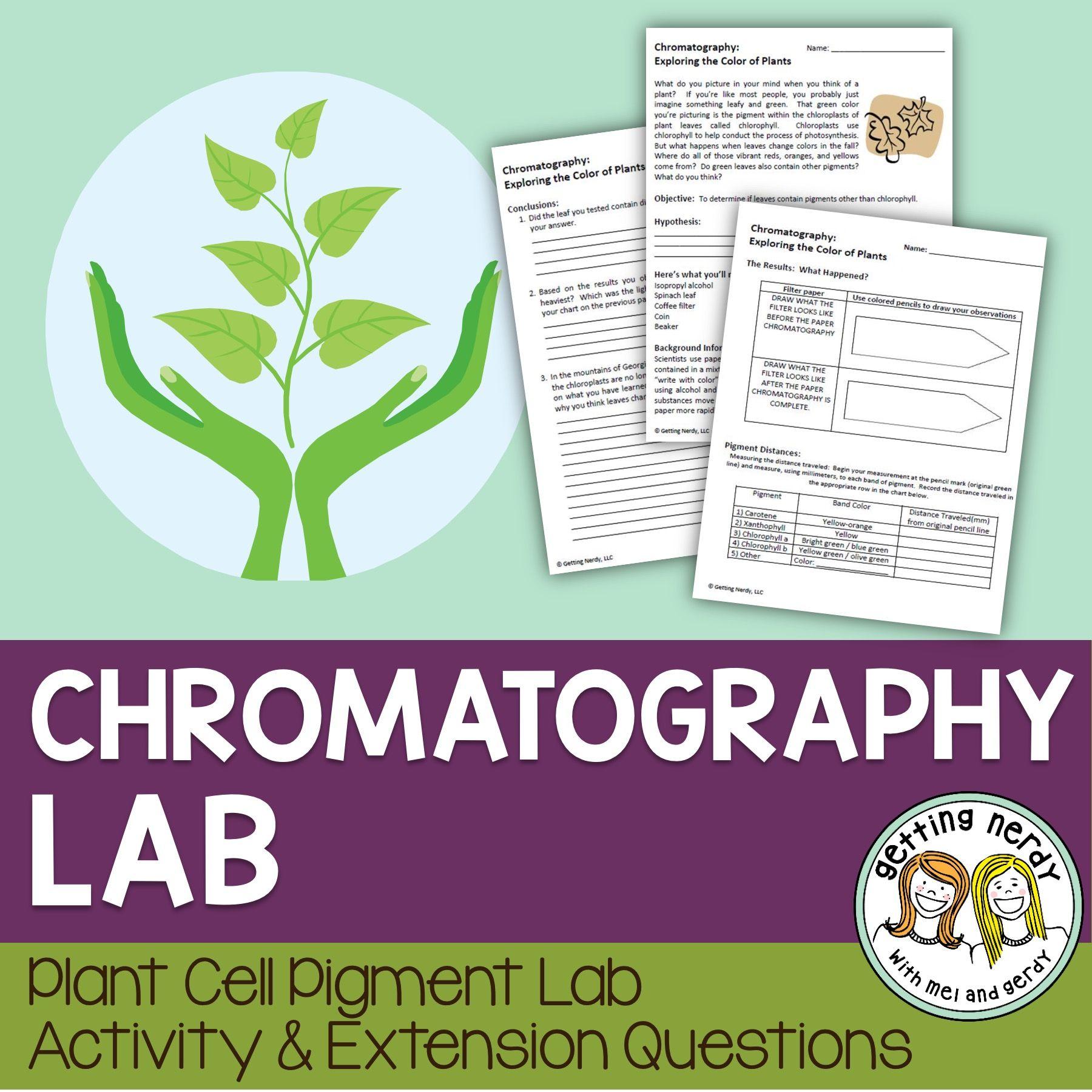 Plant Cell Pigment Chromatography Lab