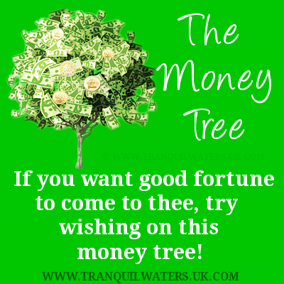 Pin By Cara Fiorentino On Luck Money Trees Good Luck Wishes Money Quotes
