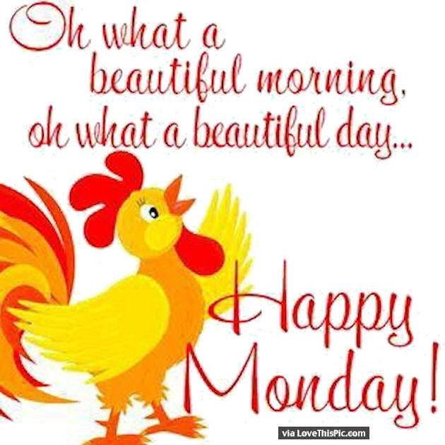Pin by tammy queen on roosters pinterest explore happy monday quotes beautiful monday and more m4hsunfo Image collections