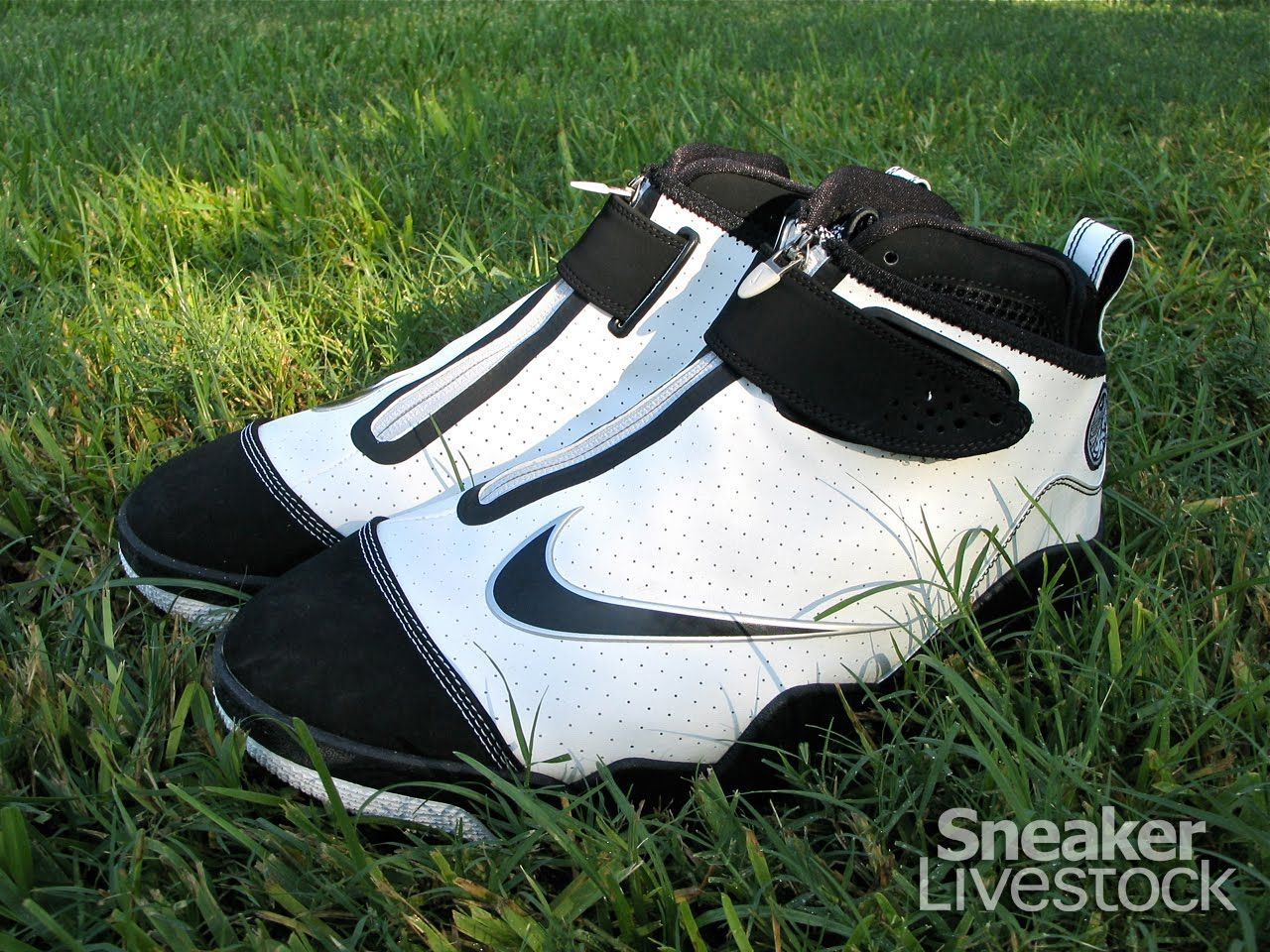 Performance Review: Nike Zoom Flight Club In 1998, Nike released the Nike  Zoom Flight 98 - the signature shoe of Gary Payton, a.k.a