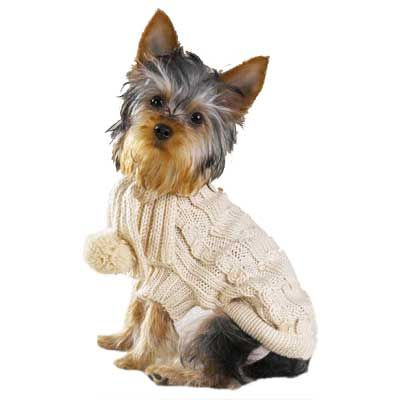 Knitting Pattern Free Dog Sweater Knitting Patterns Free