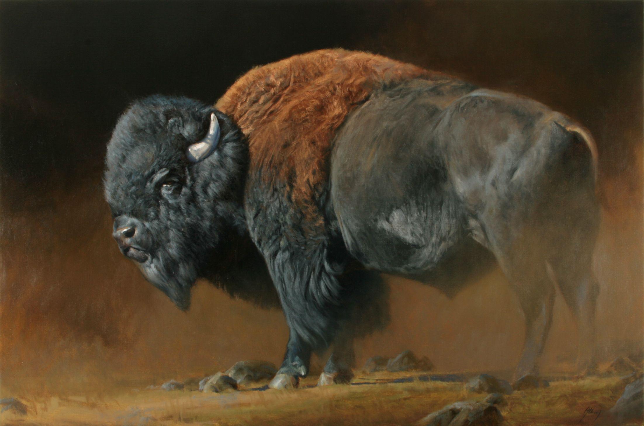 North American Edward Aldrich Bison art, North