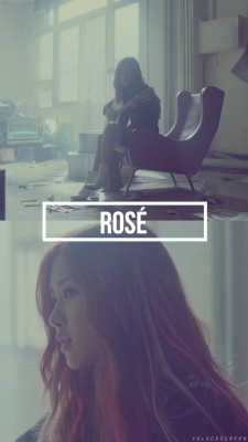 Wallpaper Rose Blackpink Rose Blackpink Pink