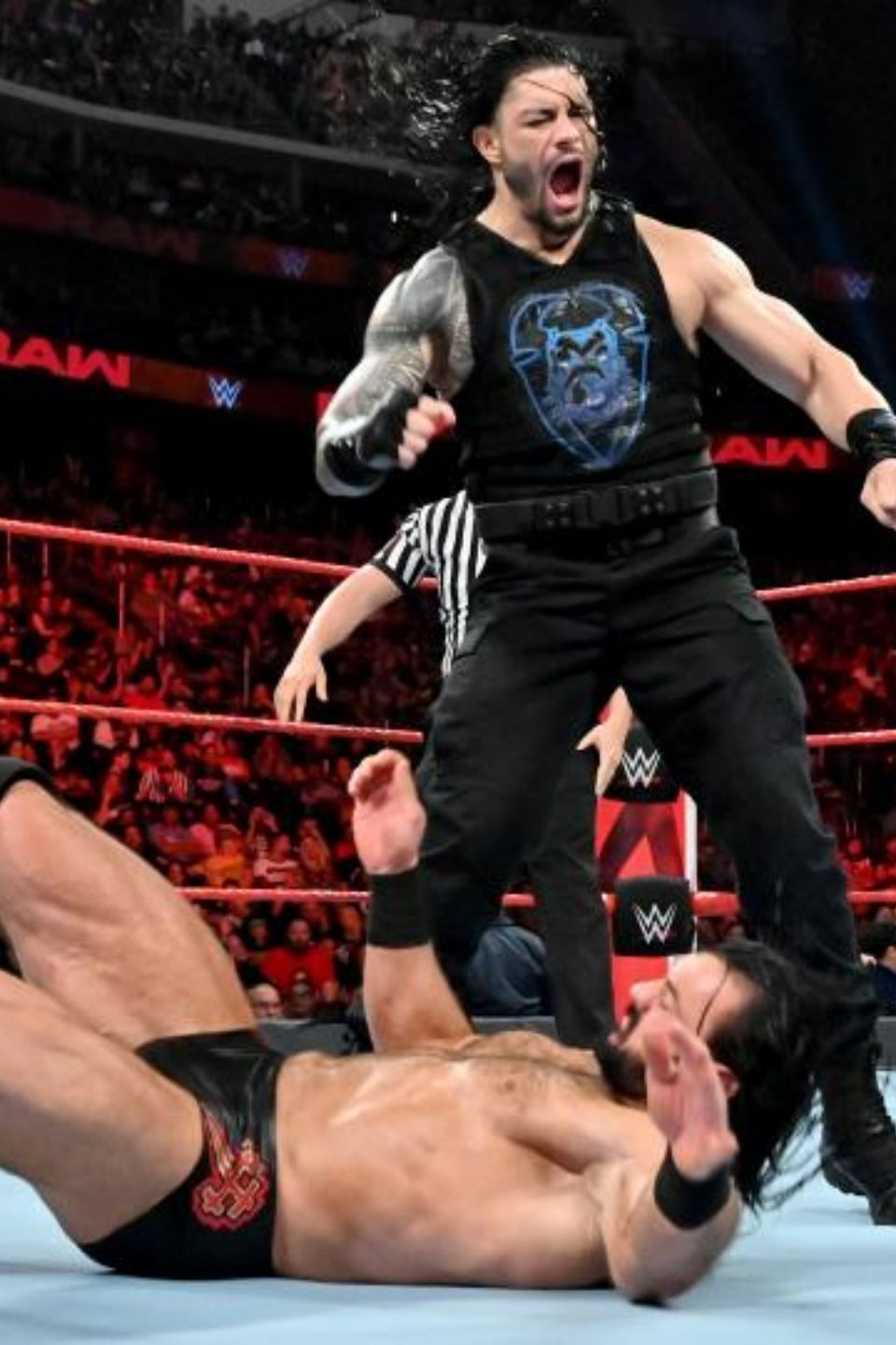 """The Roman Reigns and """"Gary Garbutt"""" outsmart Shane McMahon"""