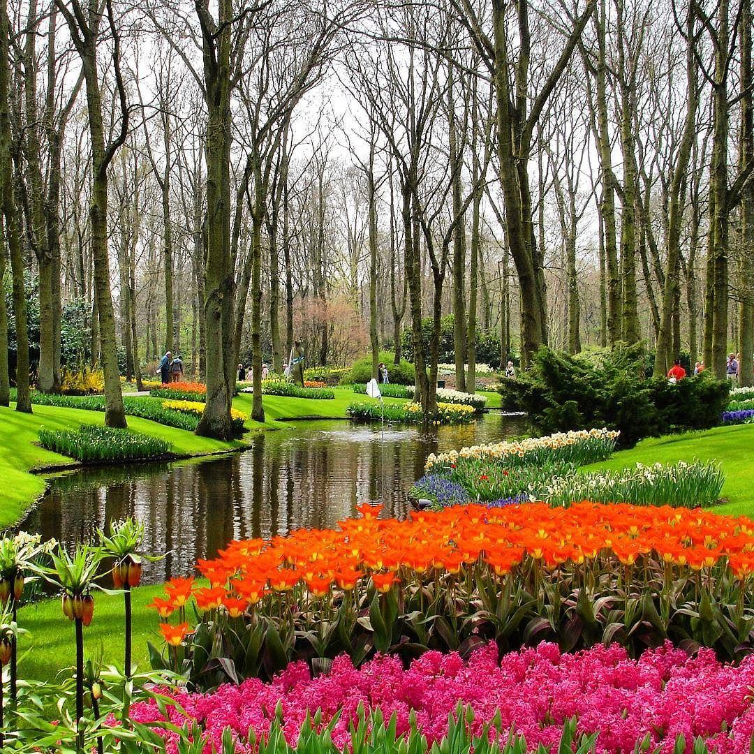memories keukenhof gardens lisse netherlands holland holanda