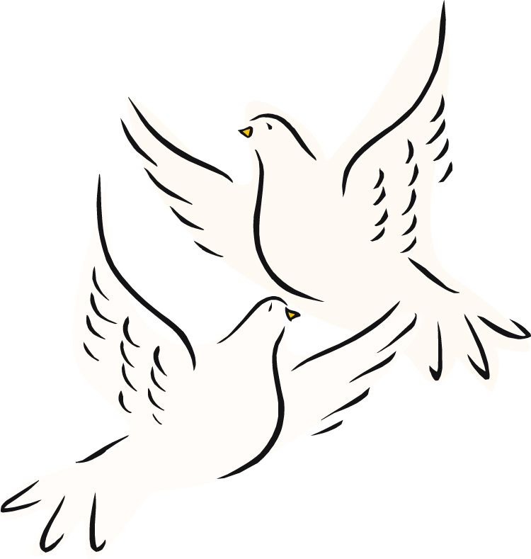 Illustration of two doves the sacrifice presented after the birth illustration of two doves the sacrifice presented after the birth of jesus luke 2 voltagebd Choice Image