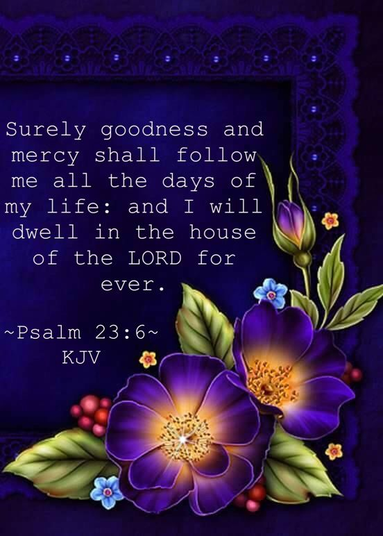 Surely goodness and mercy shall follow me all the days of my life: and I will dwell in the house of the LORD for ever. ~Psalm 23:6~ KJV ✝️