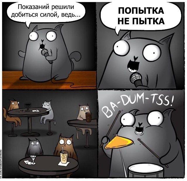 #картинки Подборка юмора и шуток от стендап-кота ...