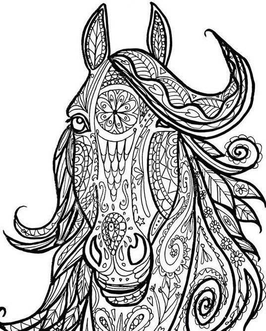 Pin On Coloring Horses