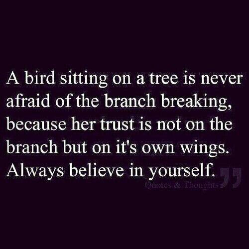 Quot Definition Believe  Cre A Ti Vi Ty  Pinterest