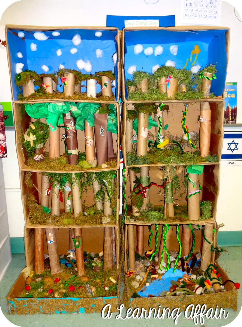 how to make a shoebox diorama of a rainforest