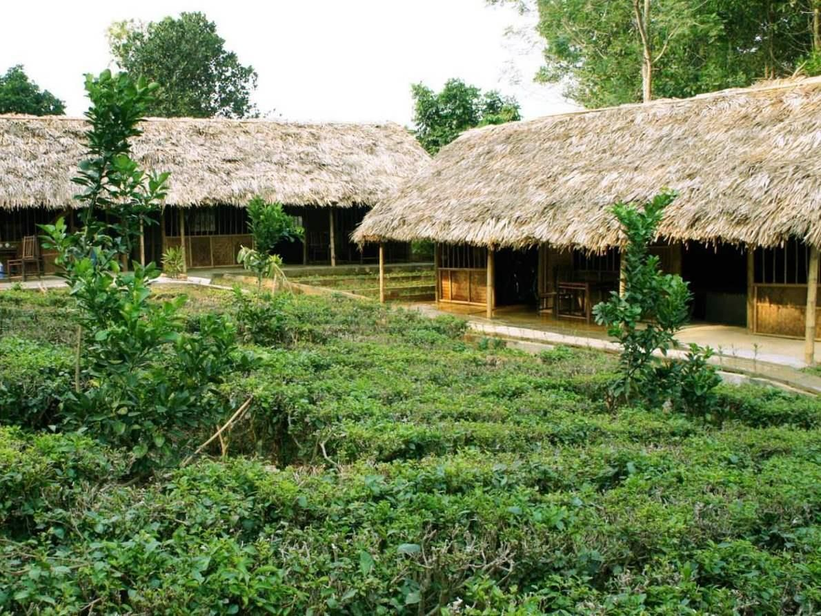 Hanoi Family Homestay Bavi Vietnam, Asia Family Homestay Bavi is perfectly located for both business and leisure guests in Hanoi. Featuring a complete list of amenities, guests will find their stay at the property a comfortable one. Free Wi-Fi in all rooms, 24-hour security, convenience store, daily housekeeping, gift/souvenir shop are just some of the facilities on offer. Each guestroom is elegantly furnished and equipped with handy amenities. The hotel's peaceful atmosphere ...