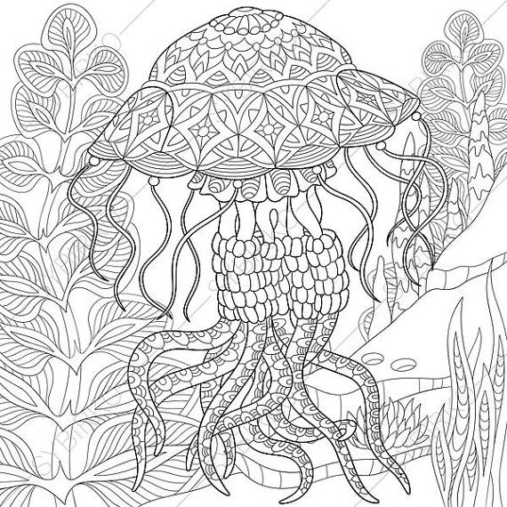 Jellyfish Coloring Page Adult coloring by ColoringPageExpress