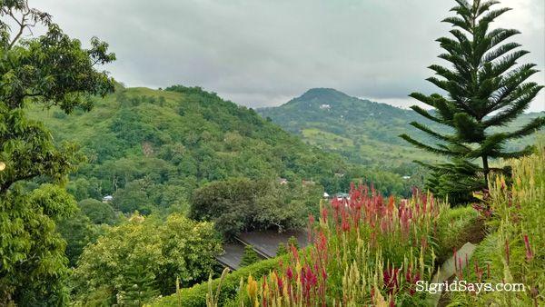 Terrazas De Flores Botanical Garden Cebu Philippines