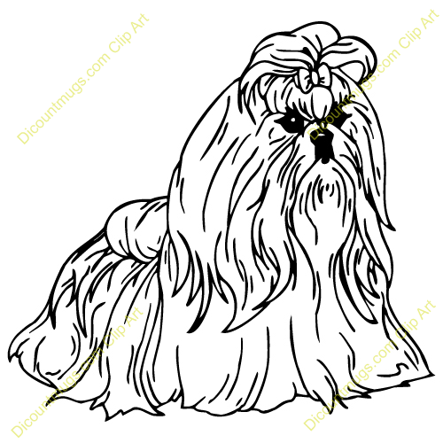 shih tzu coloring page google search - Shih Tzu Coloring Pages