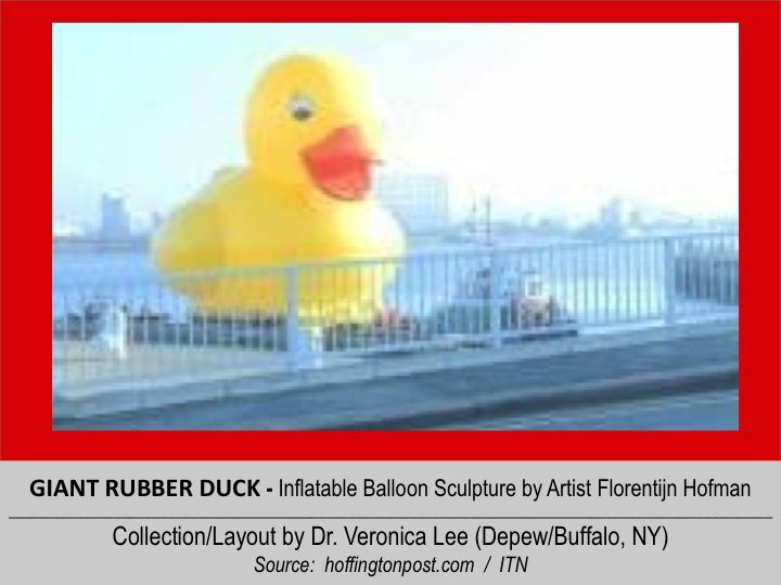 GIANT RUBBER DUCK (50' Tall) [2012].12/11 @ ENGLAND – London: River Thames -- inflatable balloon Sculpture floating around the world to spread Peace/Goodwill ~ ITN (12/11/2012)