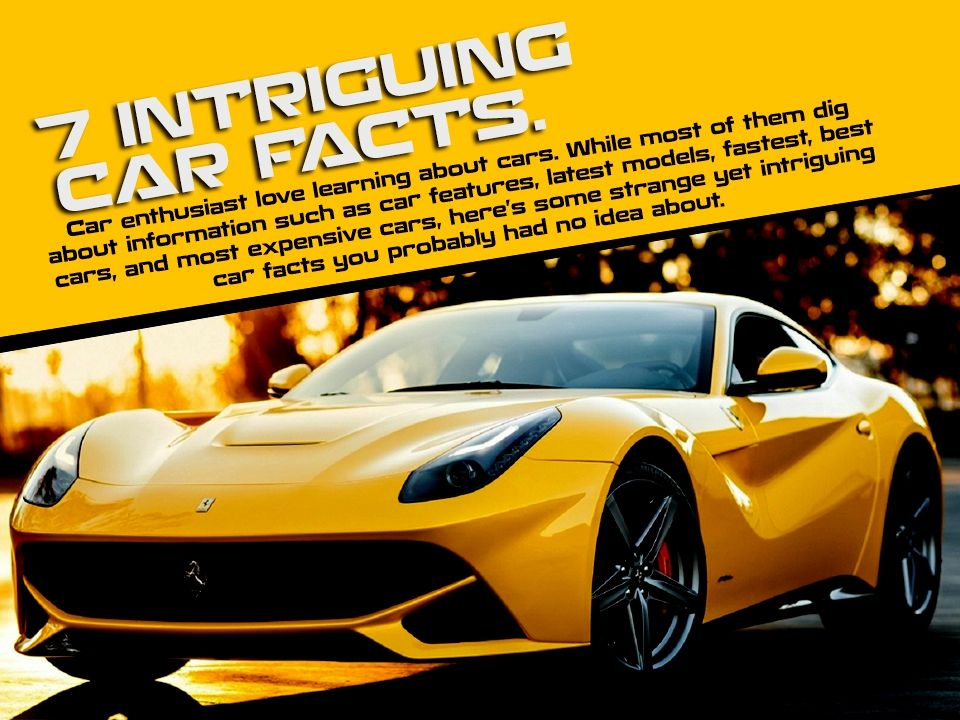 Car Enthusiast Love Learning About Cars While Most Of Them Dig