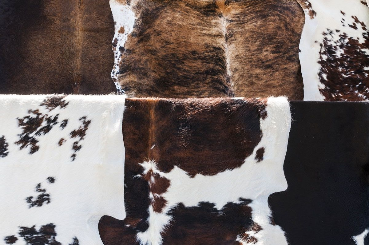 How do you hang a Cowhide without nails you ask? Do you