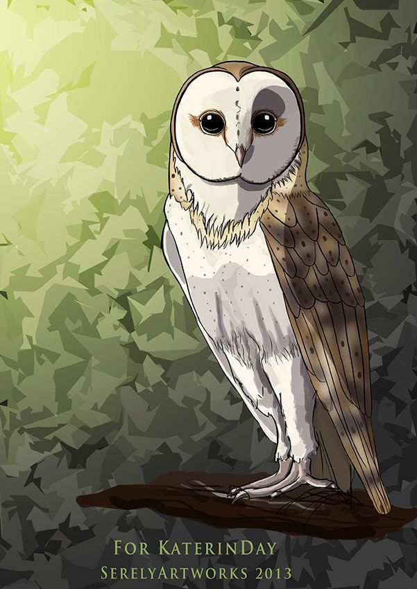 The Owl - Gift for a friend.     Photoshop CS6, Wacom tablet, 5 hours  Made and Own by Serely Artworks #illustrations #animal #digital art