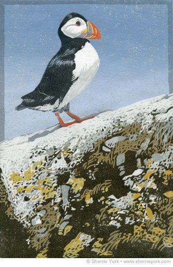 Sherrie York Art Atlantic Puffin Hand Painted Linocut Linocut Art Linocut Art
