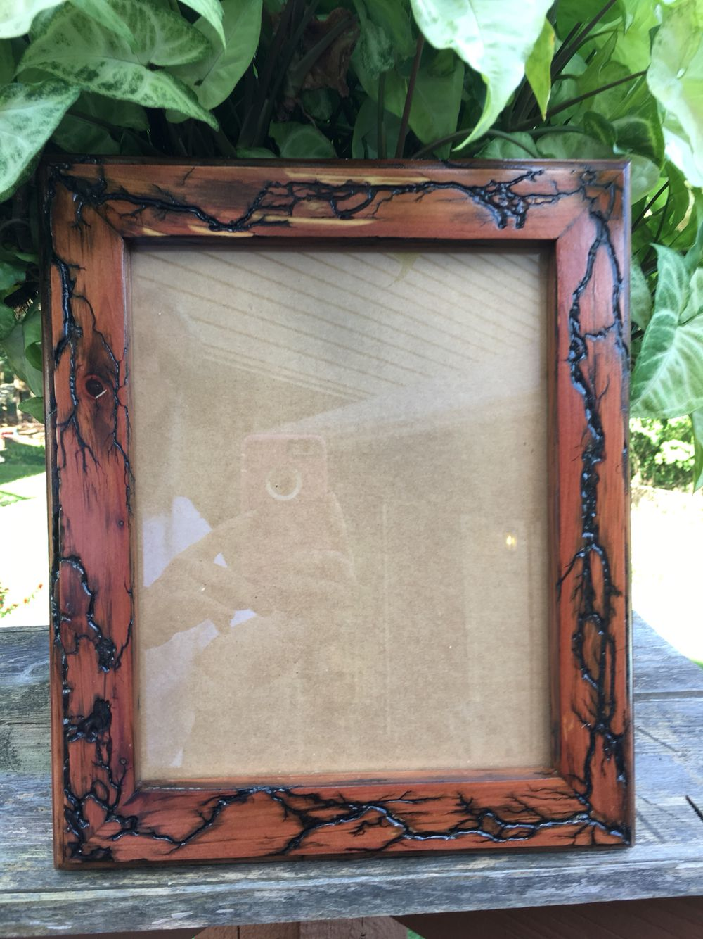 8x10 Picture Frame Electrified Fractual Lichtenberg Firgures 8x10 Picture Frames Frame Lichtenberg