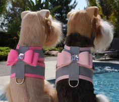 Susan Lanci Big Bow Crystal Two Tone Dog Harness Platinum Series