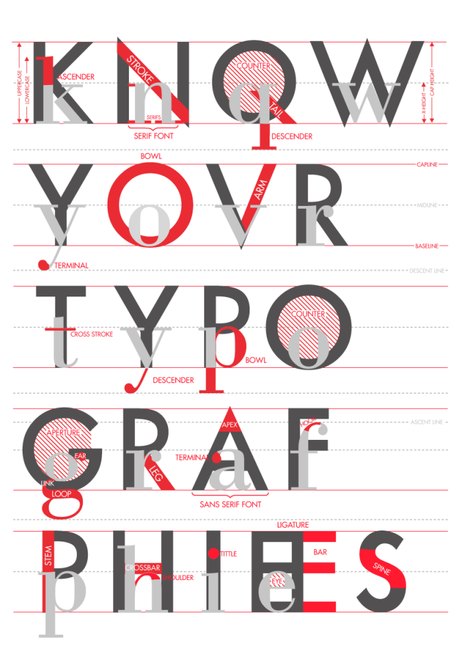 "emmadooc: ""Know Your Typographies"" a poster on the anatomy of ..."