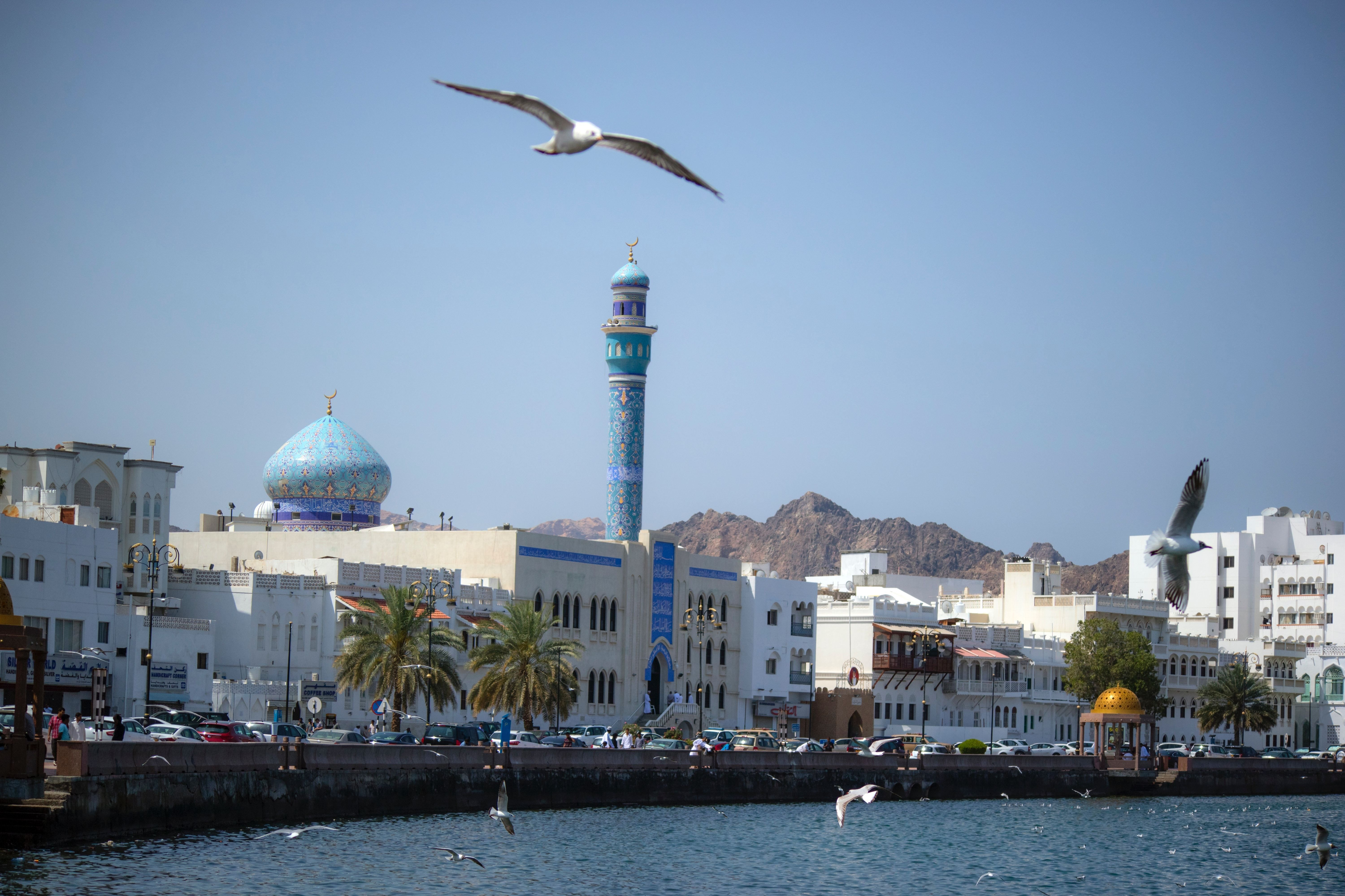 Check out this photo Oman, New travel, Traveling by yourself