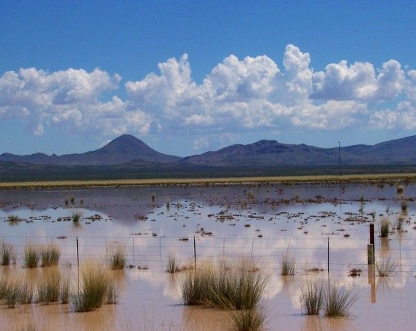 A slideshow of volcanic areas in AZ.  This lake is only 1 to 2 feet deeo, and dries up after the monsoons.  It is a playa.