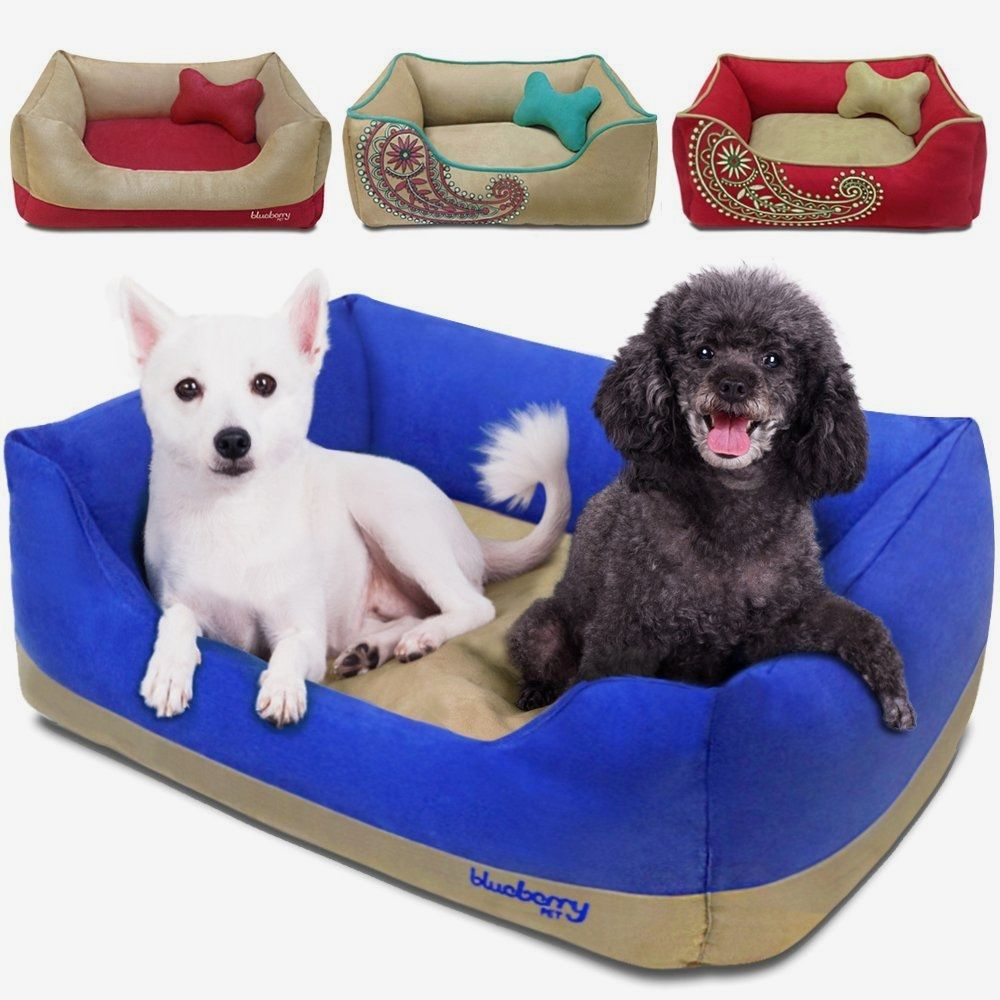 Blueberry bolster bed for small dogs Buy it now >>>>> http