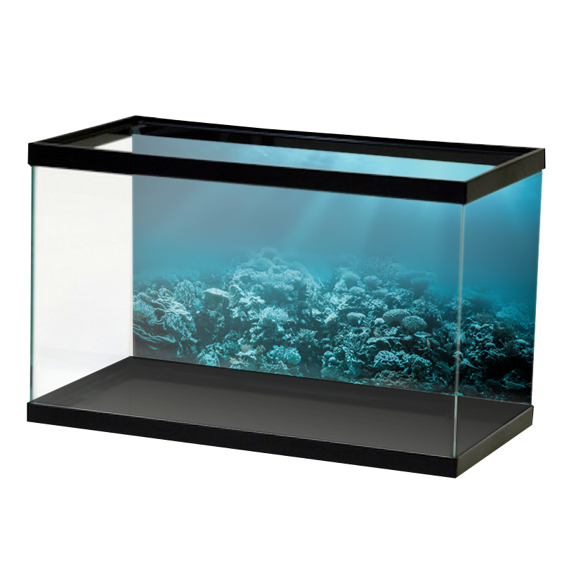 Below The Surface Self Adhesive Ready To Apply Aquarium Background Aquarium Backgrounds Background Below The Surface