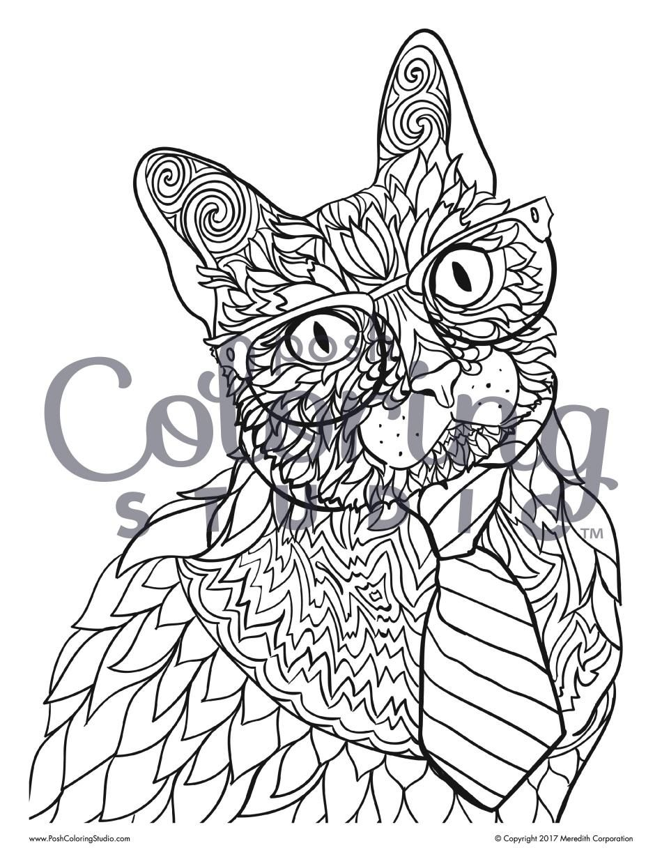 Cat In Glasses Adult Coloring Page Studious Siamese Cat Posh
