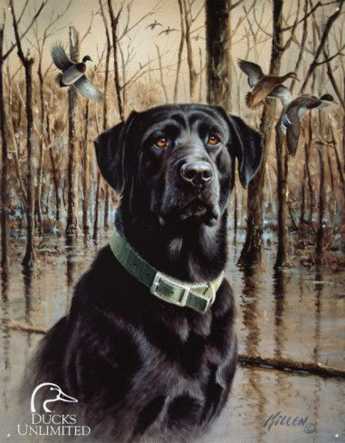 Ducks Unlimited Great Retrievers Tin Sign Black Labrador