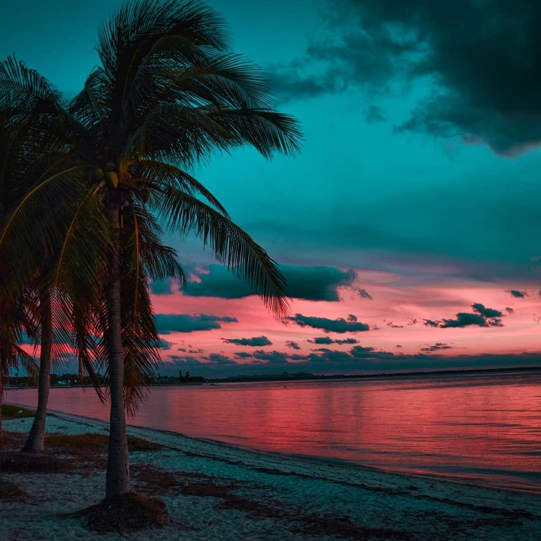 Miami florida natural beauty florida nature