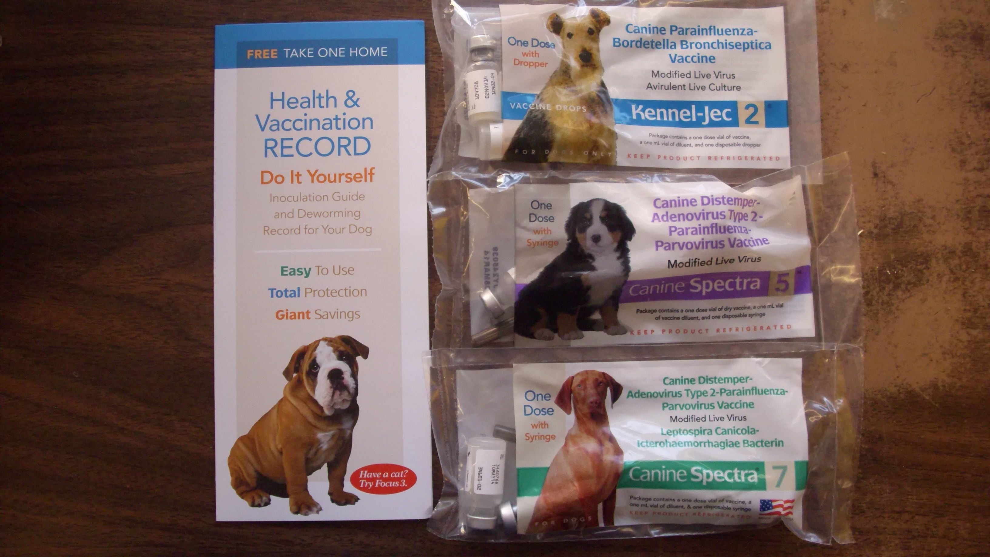 Get Your Dog Shots Plus A Shot Record Dog Shots Your Dog Dogs