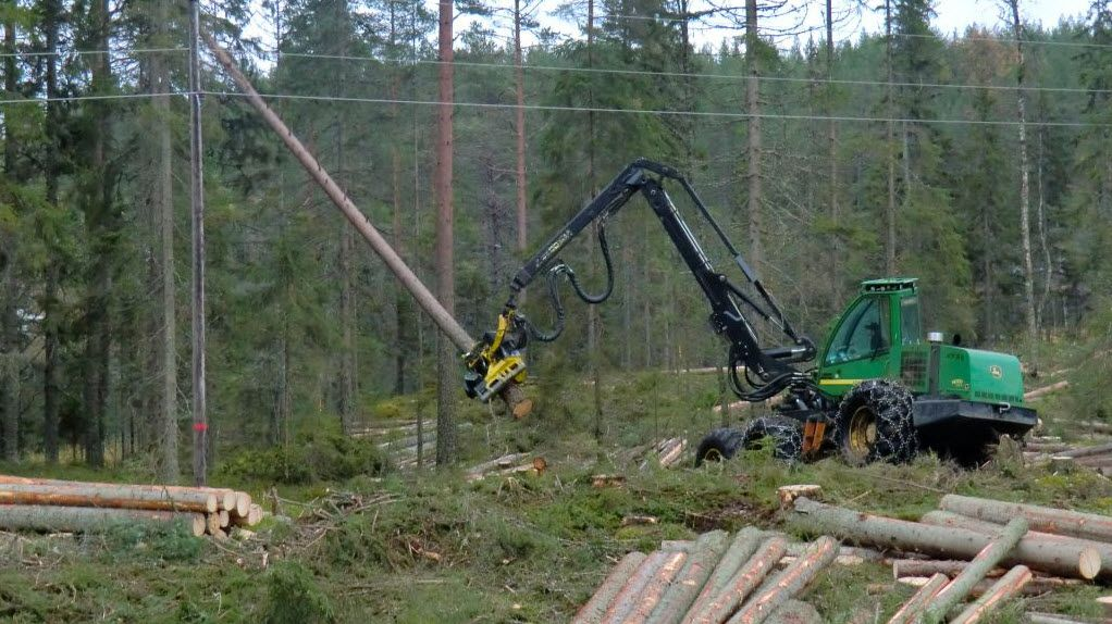 Land Clearing Services Sydney Land clearing, Site
