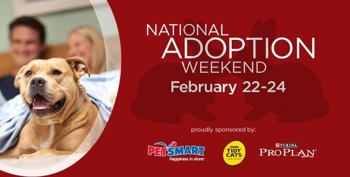 This weekend is National Adoption Weekend at Petsmart