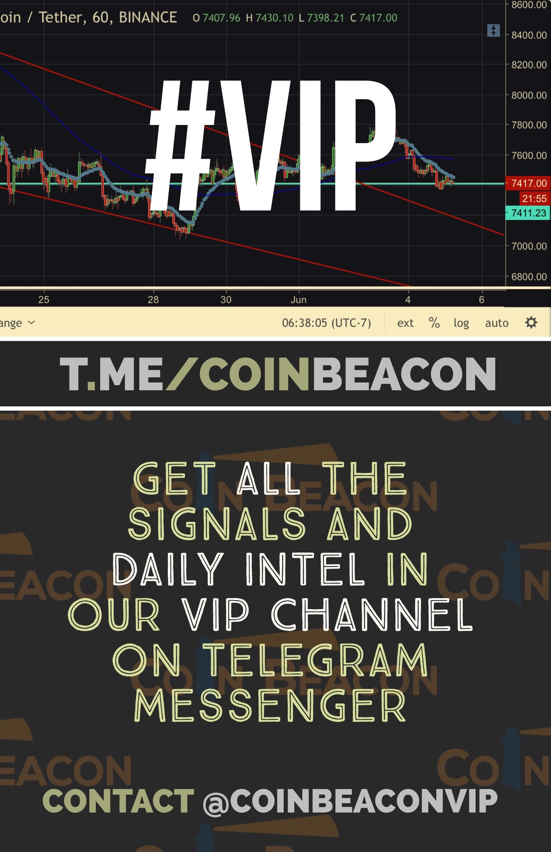 Increase Your Profits Join Our Vip Channel On Telegram Https T