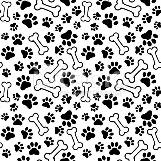 Huellas De Perros Png Vectores Psd E Clipart Para Descarga