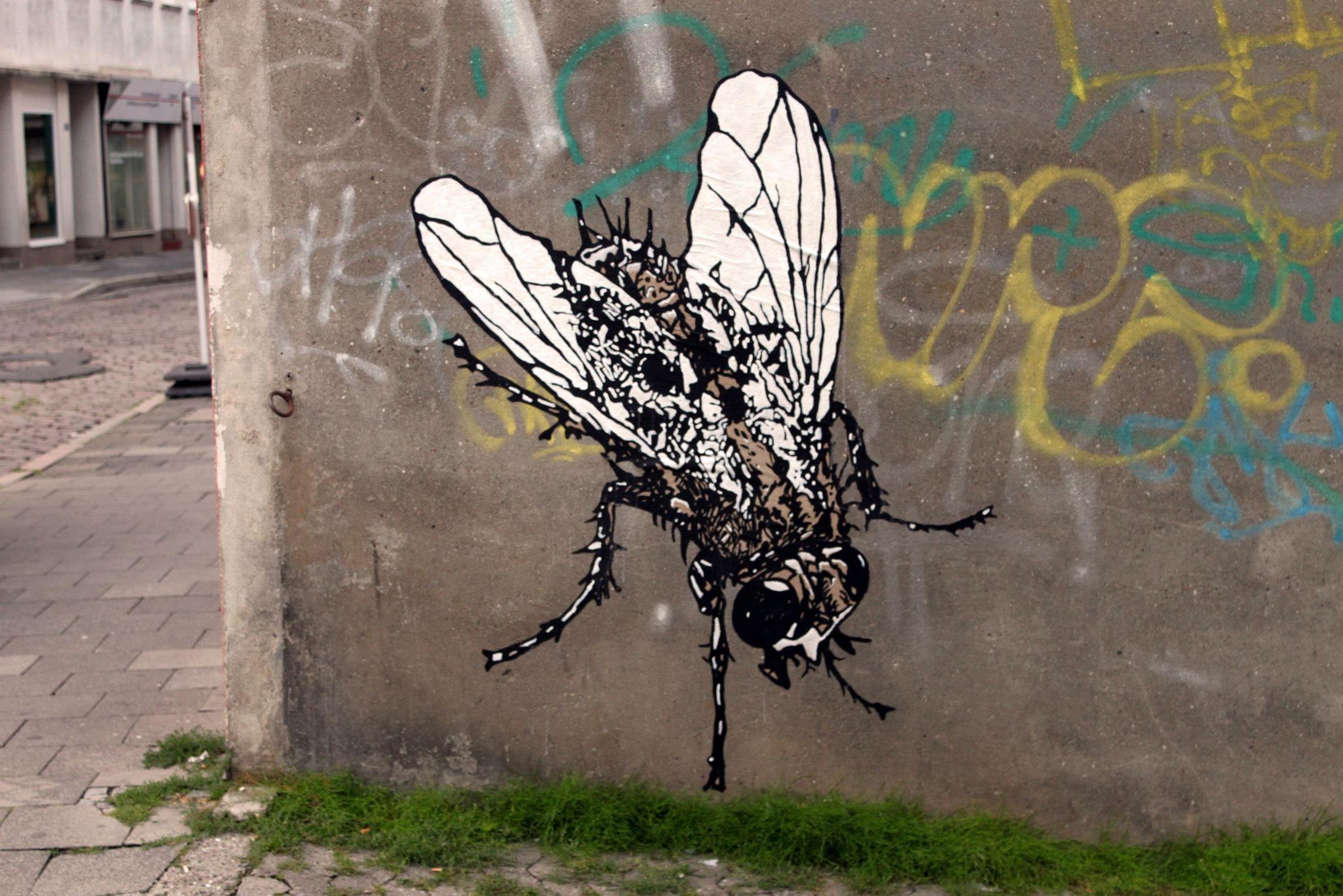 Streeart Kiel – Die Insekten Sind Los
