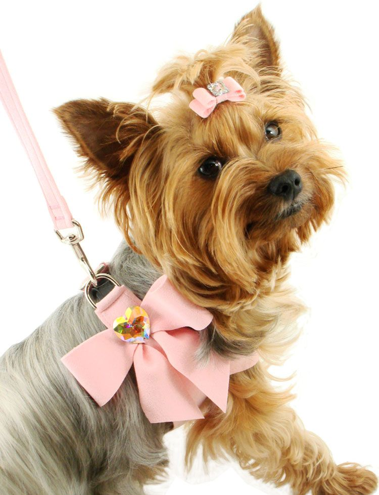 Pet Harnesses- Designer Dog Harness, Small Dog Harness, Couture, Pink, Small Harness, Pet Boutique
