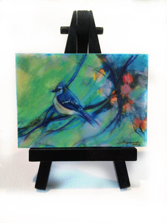 Spring Jay aceo original wood mounted Easel by dahliahousestudios #Blue Jay aceo #miniature art #Spring #aceo originals #nature aceo
