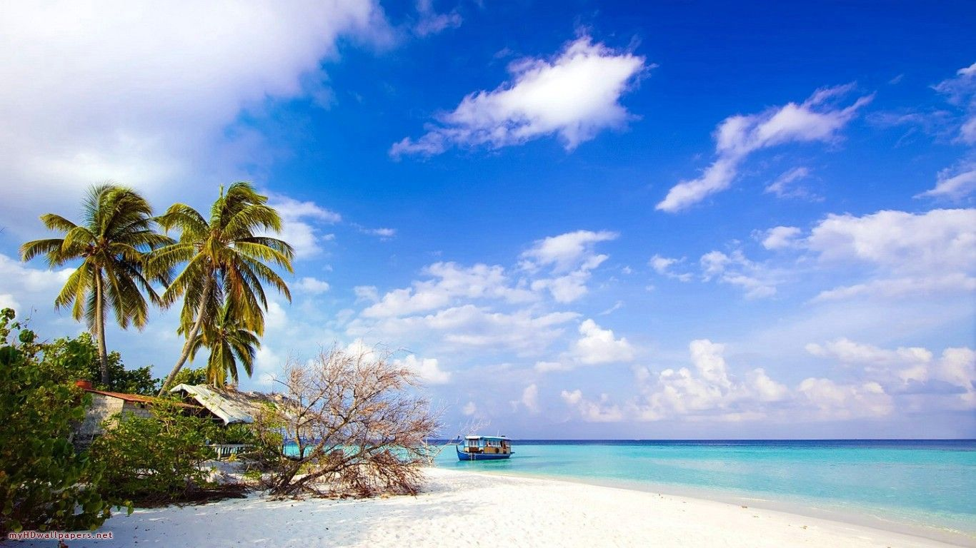 Day On The Beach Free Download Wallpaper Island Wallpaper Beach Wallpaper Tropical Wallpaper