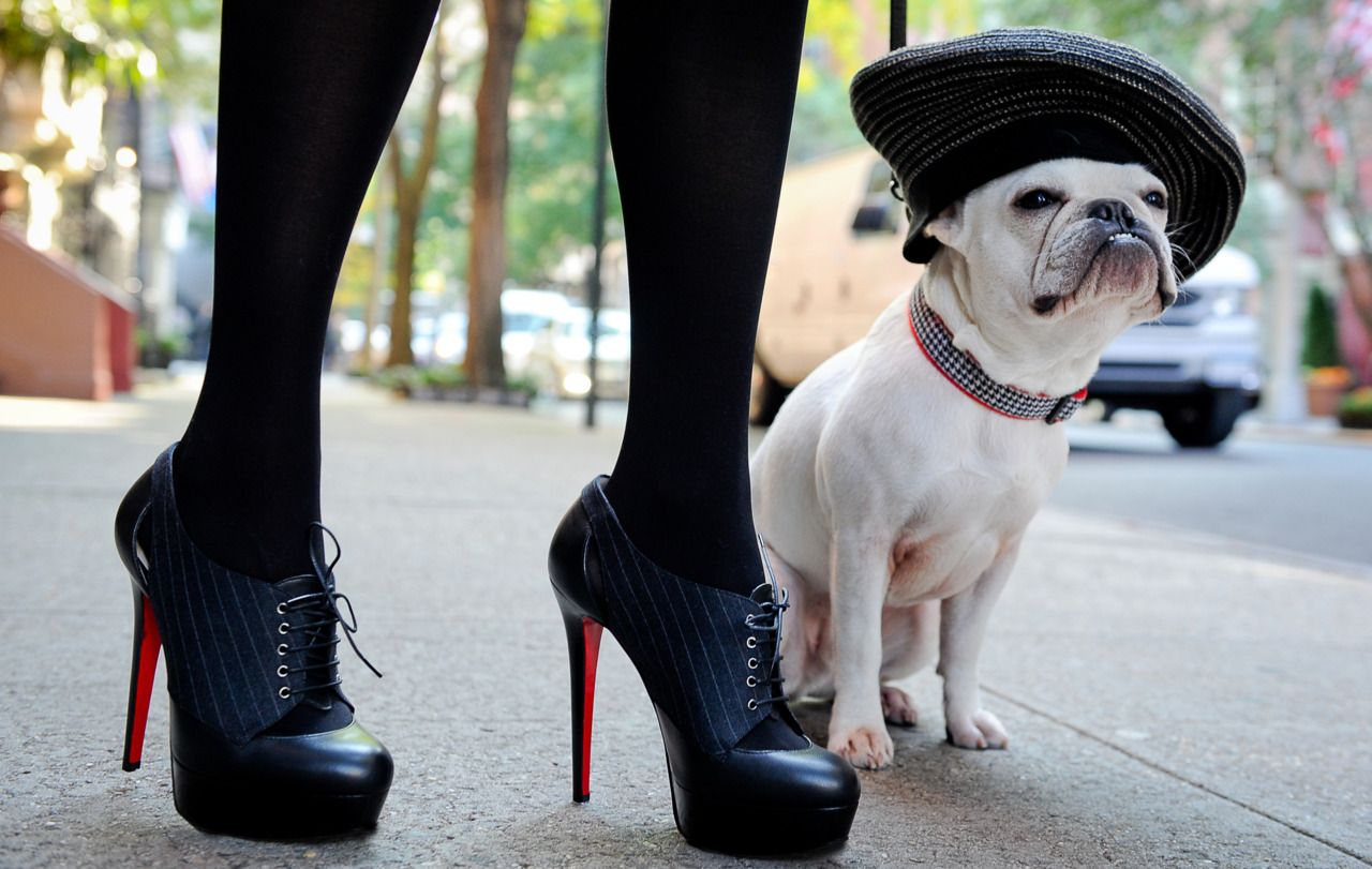 buy popular 43dda fb972 Bonjour shoe lovers! Christian Louboutins and an adorable ...