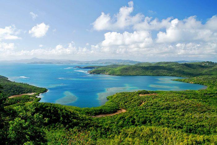 Baie du Trésor, Martinique