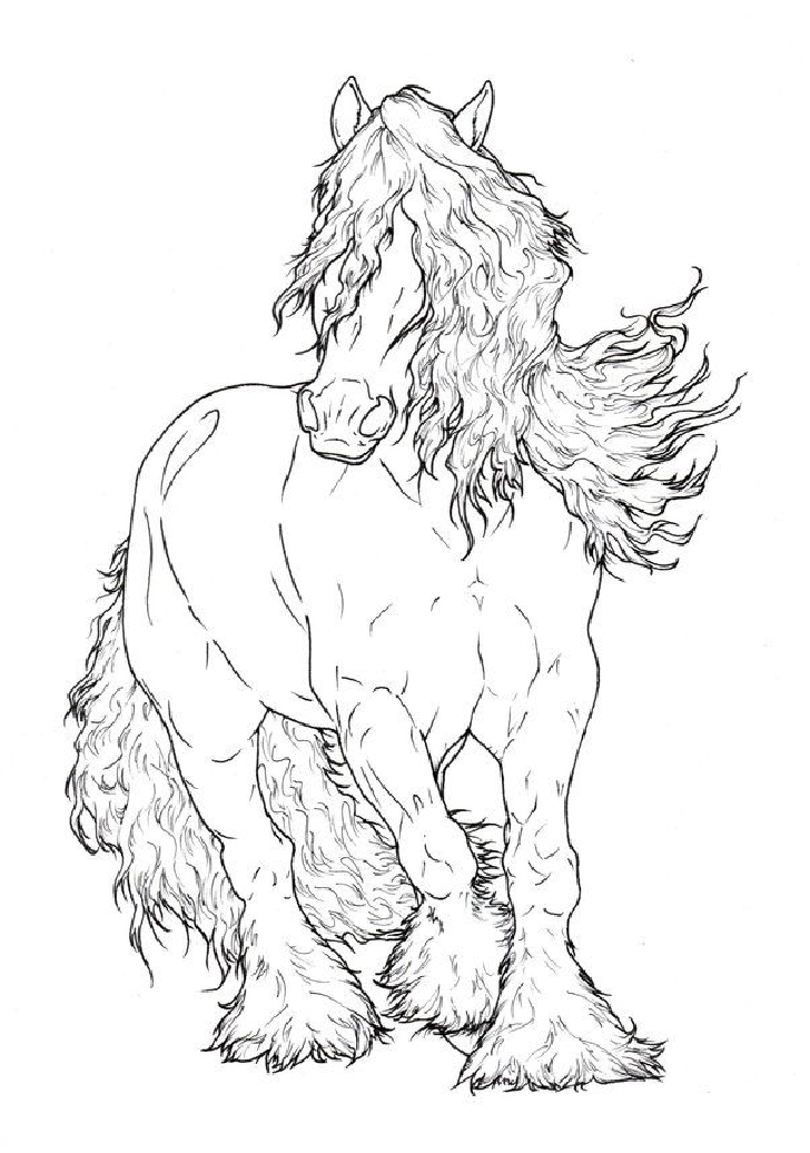 Horse Coloring Page Pages And Printables Rhpinterest: Clydesdale Horse Coloring Pages To Print At Baymontmadison.com