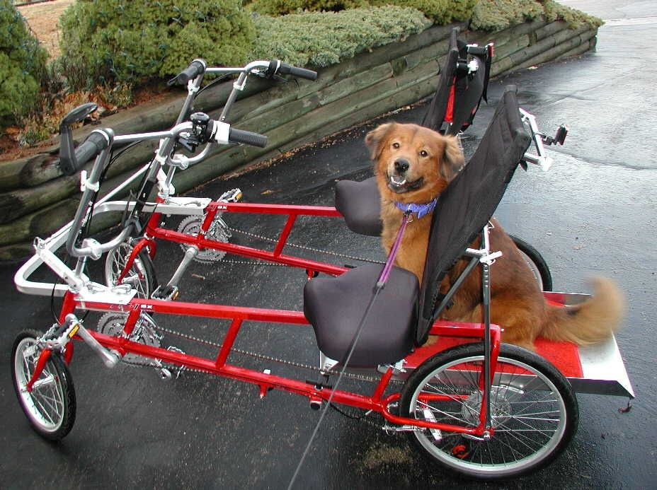 Blackbird Quadribent side by side bicycle featuring dog