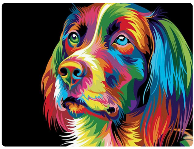 Multicolor Dog In 2019 Dog Paintings Animal Paintings