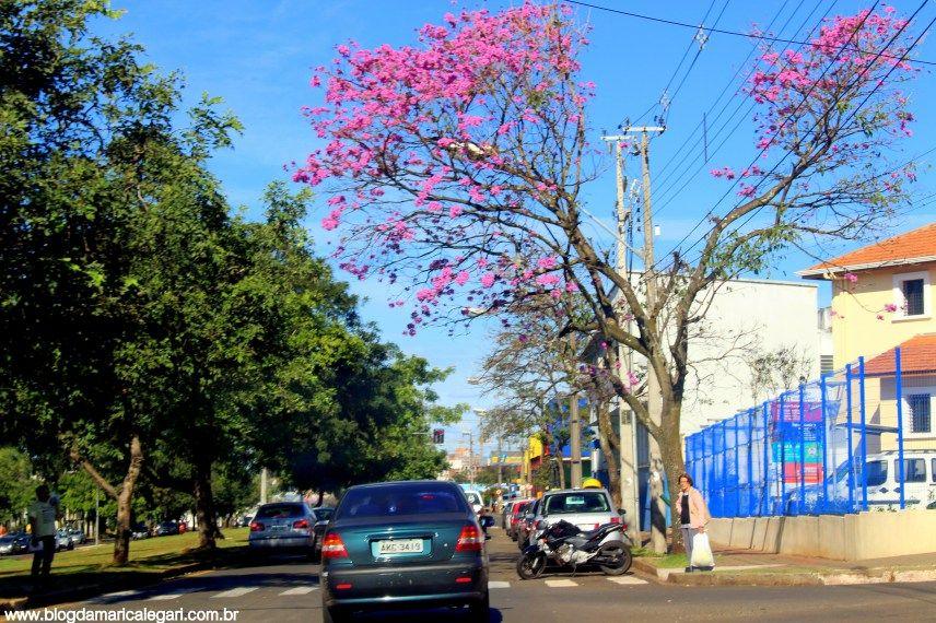 Av. Leste-Oeste - Londrina em maio 2016